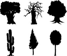 Free Set Isolated Trees - 12 Stock Photography - 6482932