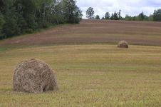 Free Landscape With Hay Royalty Free Stock Images - 6483939