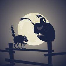 Vector. Black Cat Vs Dark Pumpkin Royalty Free Stock Photo