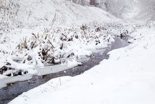 Free Snowing Over A Small River Royalty Free Stock Images - 64815699
