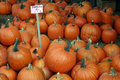 Free Pumpkins For Sale Stock Photo - 6499600
