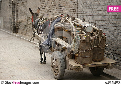Free Donkey Car Stock Photos - 6495493