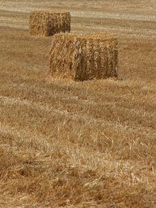 Free Hay Stack Stock Image - 6490351