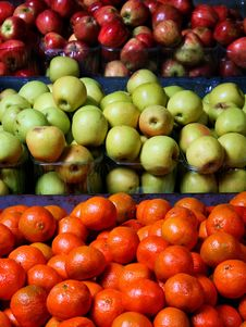 Free Fruits At The Market Stock Photo - 6492240