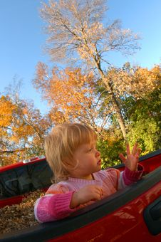 Free GIRL, AUTUMN COLORS Stock Photography - 6492602