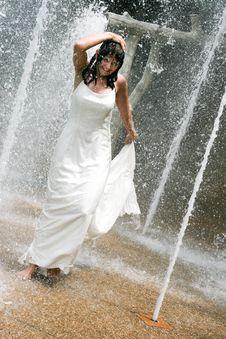 Free Bride Stock Photos - 6493863
