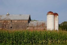 Free Barn With Silo And Corn Field Royalty Free Stock Photography - 6494747
