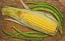 Free Green Beans And Corn. Stock Photo - 6494900