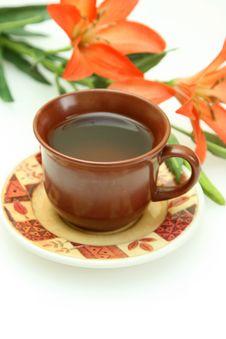 Free Cup Of Tea Stock Photos - 6495513