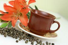 Free Cup Of Tea Stock Photos - 6495543