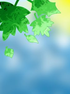 Free Summer Leaves Background Stock Images - 6498274