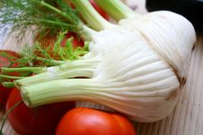 Free Fresh Fennel Stock Images - 6498314