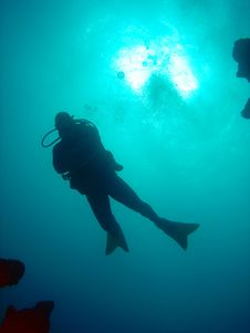 Free Diver With Coral Reef Royalty Free Stock Photos - 653828