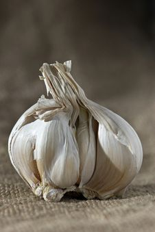 Free Garlic Bulb Royalty Free Stock Photography - 654187