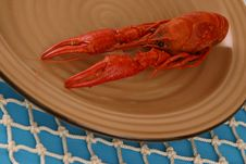 Free Crawfish On Brown Plate Royalty Free Stock Images - 658379