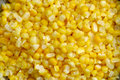 Free Corn Stock Images - 6509214
