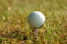 Free Golf Ball In Grass Stock Image - 6501221
