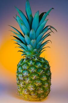 Free Pineapple Stock Image - 6502561