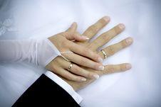Free Wedding Rings Stock Photos - 6503303