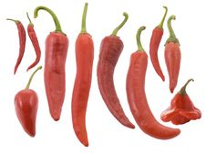 Different Types Of Red Red Hot Chili Pepper Stock Photo