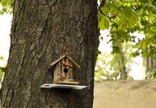 Free Bird House Royalty Free Stock Photos - 6504238