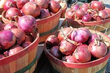 Free Red Onions Stock Photo - 6504930
