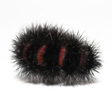 Free Large Woolly Caterpillar Royalty Free Stock Photography - 6505367