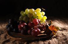 Free Grapes Stock Photos - 6506753