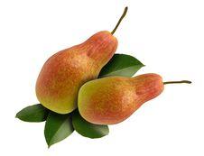 Free Pears Pair Stock Image - 6507041