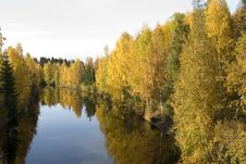 Free River In The Autumn In Boden Royalty Free Stock Photo - 6508745