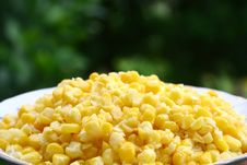 Free Corn Stock Images - 6509514