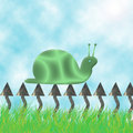 Free Snail Background Stock Images - 6510164