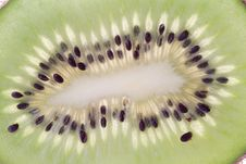 Free Kiwi Stock Photos - 6510553