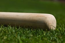 Free Baseball Bat Royalty Free Stock Photography - 6511377