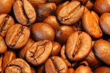 Free Coffee Beans Closeup Stock Photography - 6512142