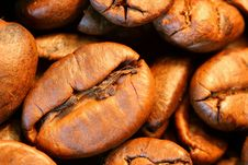 Free Coffee Beans Closeup Royalty Free Stock Images - 6512149