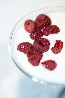 Free Raspberries Creamy Martini Stock Photo - 6513110