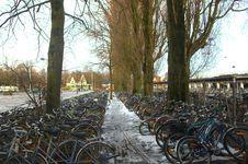 Parking Of Bicycles. Stock Photos