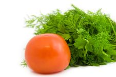 Free Tomato With Parsley Stock Images - 6513724