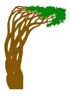 Silhouette Abstract Tree Stock Photo