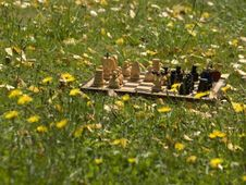 Free Chessboard Royalty Free Stock Photography - 6514097