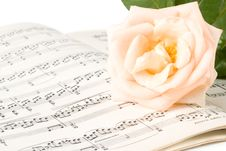 Free The Rose On Notes Stock Photo - 6514660