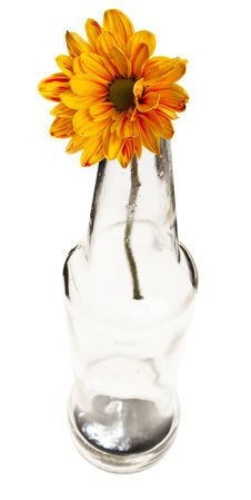 Free Yellow Flower In Empty Bottle, Shot From Top,  Iso Stock Photo - 6517310