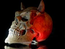 Free Halloween Skull Stock Photography - 6519782