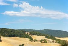 Free Tuscan Landscape Royalty Free Stock Photography - 6519977