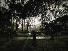 Park With Dark Cloudy Sky During Rain In Winter.
