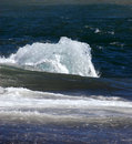 Free Ice Floe In The Sea Royalty Free Stock Photography - 6522117
