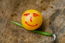 Free Little Plum As Emoticon Royalty Free Stock Images - 6520489