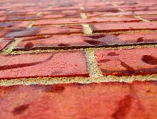 Free Brick Wall 01 Stock Photos - 6520663