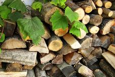 Woodpile. Fire Wood For The Furnace. Stock Images